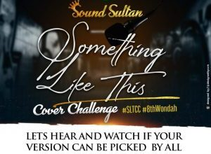 Sound Sultan Something Like This