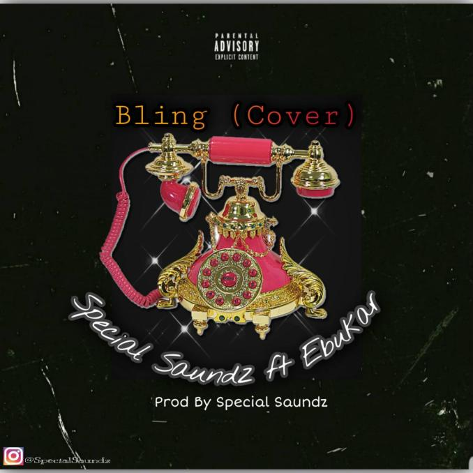 Special Saundz Bling (Cover)