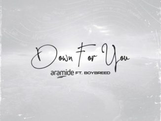 Aramide Ft. Boybreed – Down For You