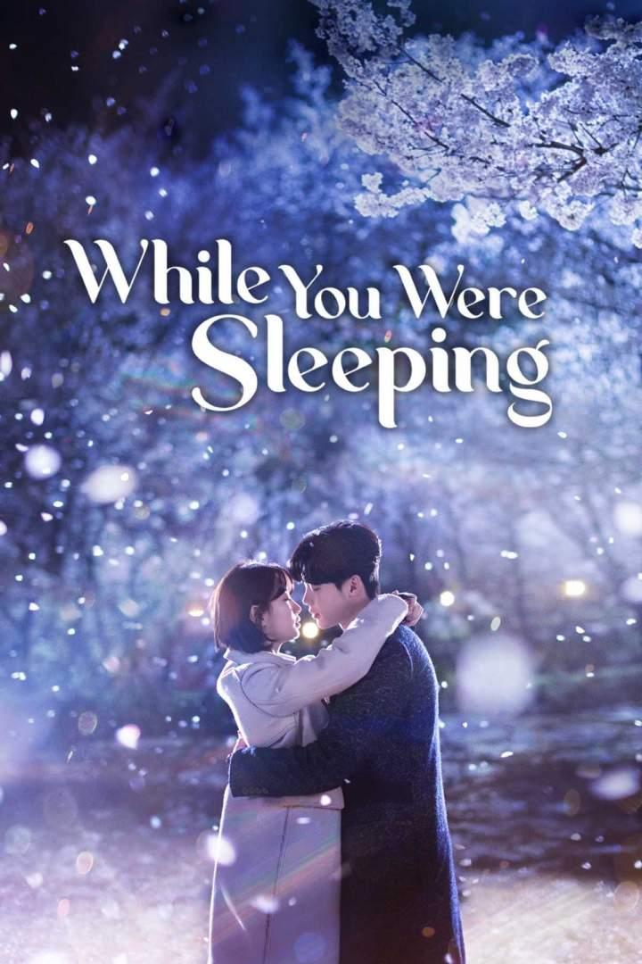 While You Were Sleeping Season 01 mp4 download