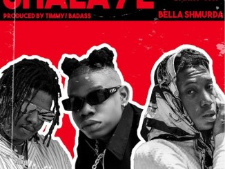 Sugarbana Ft Barry Jhay x Bella Shmurda Shalaye mp3 download