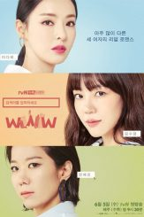 COMPLETE: Search WWW Season 1 Episode 1 – 16 (Korean Drama)