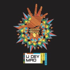 MP3: Reekado Banks – You Dey Mad