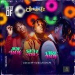 DJ Mbitz – Best Of Seyi Vibez, Fireboy & Joeboy