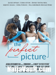 DOWNLOAD: The Perfect Picture – Nollywood Movie
