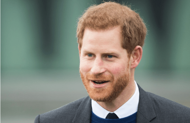 Crown Prince, Harry Takes On New Job As Tech Startup Executive