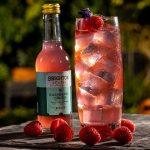 brighton-gin-raspberry-crush-cocktail