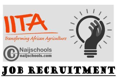 Institute of Tropical Agriculture (IITA) Job Recruitment | APPLY NOW