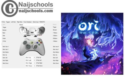 Ori and the Will of the Wisps X360ce Settings for Any PC Gamepad Controller   TESTED & WORKING