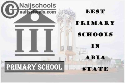 11 of the Best Primary Schools to Attend in Abia State Nigeria | No. 5's the Best