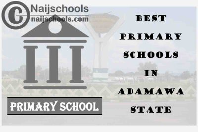 11 of the Best Primary Schools to Attend in Adamawa State | No. 7's the Best