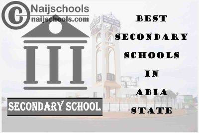 13 of the Best Secondary Schools to Attend in Abia State Nigeria | No. 11's the Best