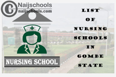 Complete List of Accredited Nursing Schools in Gombe State Nigeria