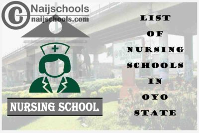 Complete List of Accredited Nursing Schools in Oyo State Nigeria
