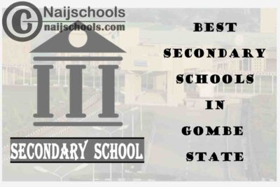 15 of the Best Secondary Schools to Attend in Gombe State Nigeria | No. 7's the Best