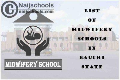 Full List of Accredited Midwifery Schools in Bauchi State Nigeria