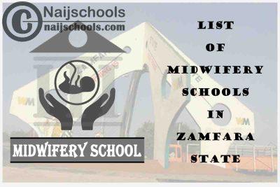 Full List of Accredited Midwifery Schools in Zamfara State Nigeria