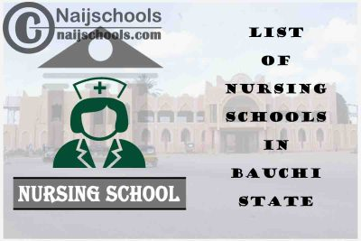 Complete List of Accredited Nursing Schools in Bauchi State Nigeria