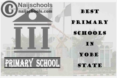 11 of the Best Primary Schools to Attend in Yobe State Nigeria | No. 6's Top-Notch
