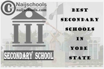 13 of the Best Secondary Schools to Attend in Yobe State Nigeria   No. 7's the Best