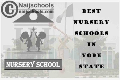 11 of the Best Nursery Schools in Yobe State Nigeria | No. 8's the Best