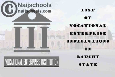 Full List of Vocational Enterprise Institutions in Bauchi State Nigeria