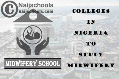 Full List of Accredited Colleges in Nigeria to Study Midwifery
