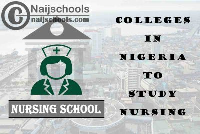 Full List of Accredited Colleges in Nigeria to Study Nursing