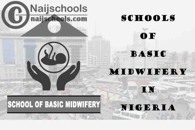 Full List of Accredited Schools of Basic Midwifery in Nigeria