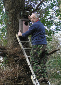 Mike Woodley fastening one of our owl boxes to an oak tree 2007