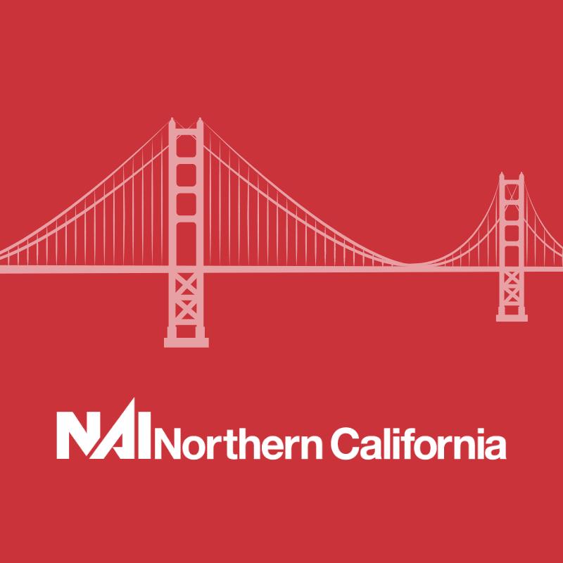 NAI logo square with bridge