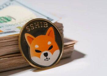 Shiba holder who bought $8,000 worth of SHIB last August now worth $5.7 billion