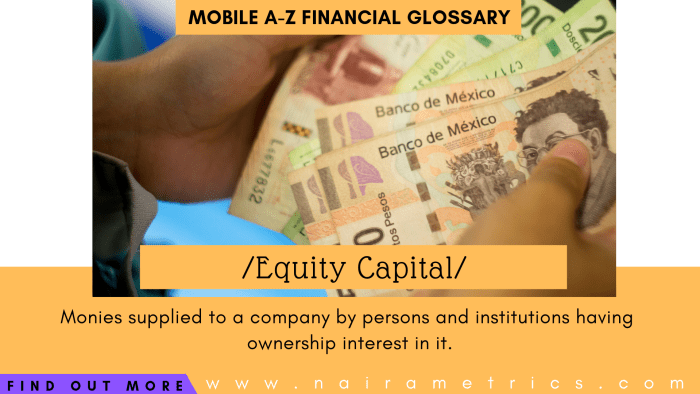 Definition of Equity Capital