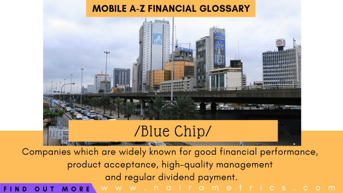 Definition of Blue Chip, financial terminologies - investing