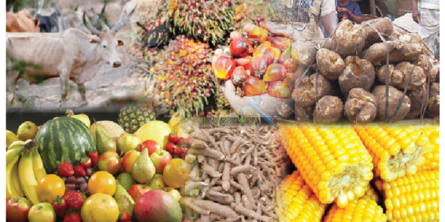 Nigerian Agricultural Sector To Receive N84bn Boost