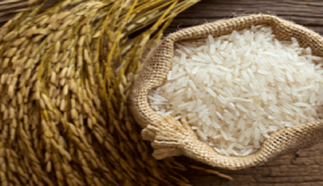 WACOT Limited opens N10 billion rice mill in Kebbi