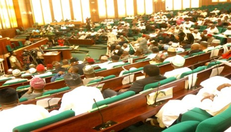 House Of Reps Approve Buhari's Increment In Diaspora Fund To $300m
