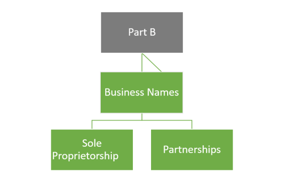 Types of companies part b