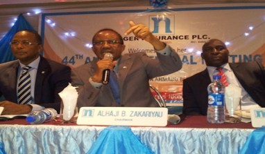 Auditors Flag Niger Insurance Latest Results