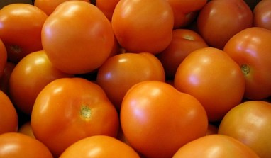 Dangote Tomato Factory to resume operations in February 2017