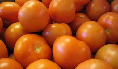 Tomato Ebola: Pesticide For Killing Moths Discovered