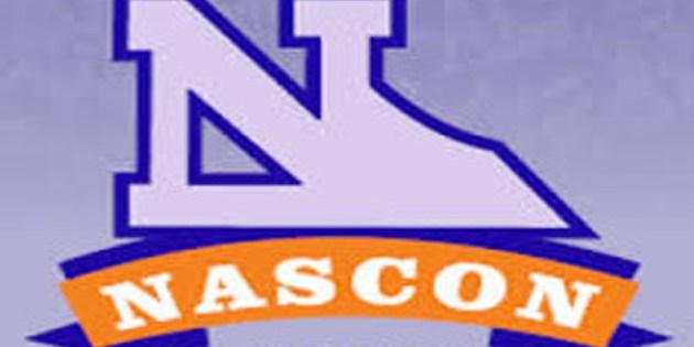 Alert: Nascon Allied Industries Plc Release 2016 Half Year Earnings