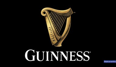 Alert: Guinness Nigeria Post First Quarter Loss (2016/2017 results)