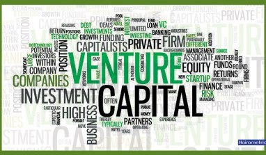 ​ ​ Who Are Venture Capitalists?