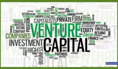   WhoAre Venture Capitalists?