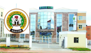 NAICOM Calls For Replacement Of Linkage Assurance MD Designate