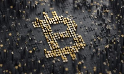 MicroStrategy, Data obtained from thecrypto analytics firm says that, the number of Bitcoin addresses having at least 0.1 BTC has risen by 14% over the past one year, Did Satoshi Nakamoto cause the panic sell-off in Bitcoin market, Bitcoin hits $8,826, Pigs hit hard at BTC market, plunges 8%