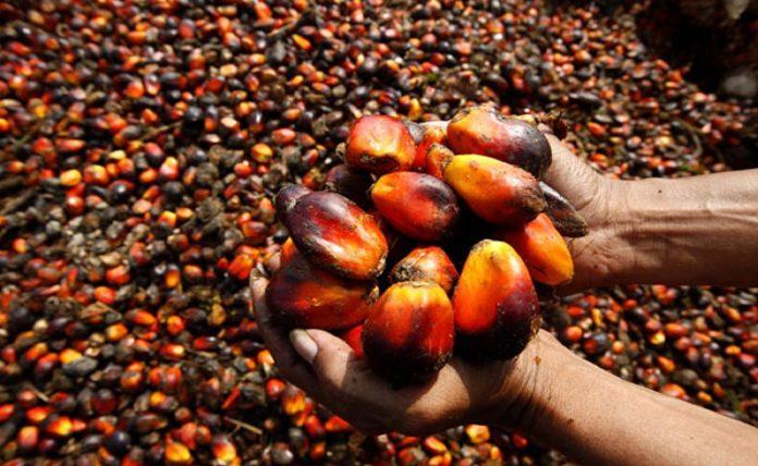 Presco Plc Oil Production