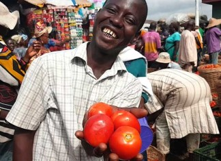 Household Survey: Good times for Nigerian as Food Prices witness drop