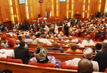 Senate urges FG to diversify from crude oil to natural gas production , Senate seeks textile importation ban